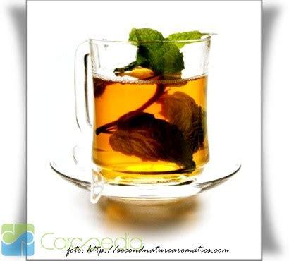 Teh Mint cara mudah membuat teh mint ladapur