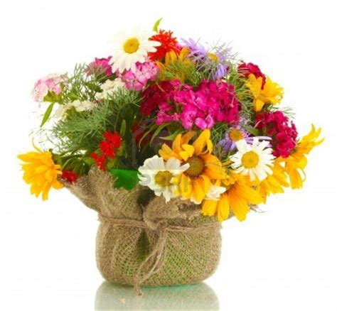 mazzo di fiori per auguri mazzo di fiori x auguri gpsreviewspot