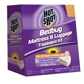 hot shot bed bug shop hot shot 43 04 oz bed bug strips at lowes com