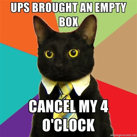 top business cat meme