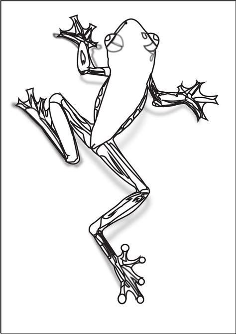 treefrog coloring pages  art coloring books frog
