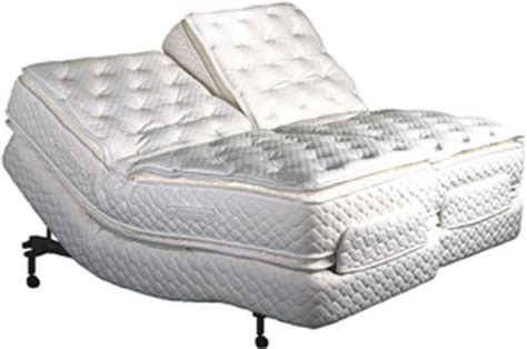 air adjustable beds innomax medallion 174 air bed w adjust a rest pump prodigy