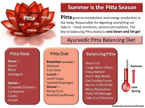 Pitta Detox by Best 25 Pitta Dosha Ideas On Ayurveda Pitta
