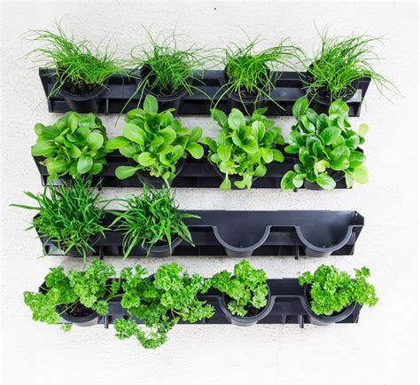 Vertical Garden Plants List Greenwall Pixel Pot Vertical Planting Kit Holman