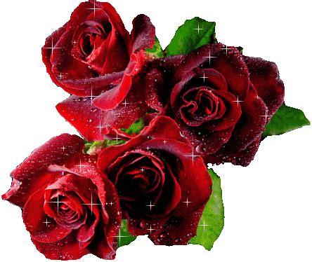 gifs  fondos paz enla tormenta gifs de rosas variadas