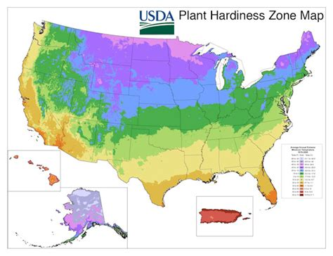 growing zone map tywkiwdbi quot wiki widbee quot new usda plant hardiness zone map