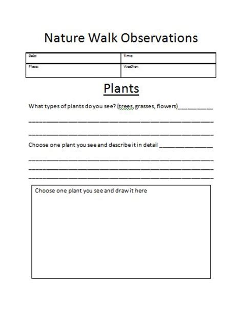 Observation Worksheet by Developing The Power Of Observation The Homeschool Scientist