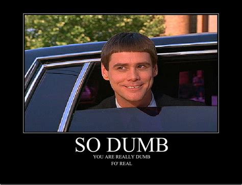 Dumb And Dumber Memes - memes graphics and gif animations for facebook