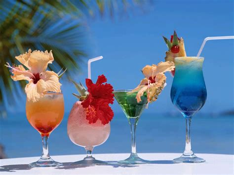 martini tropical cute photography love summer
