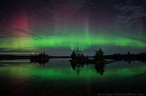 northern lights duluth mn 24 hours of lake superior magic 365 days of birds