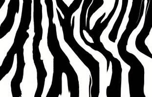 zebra print black zebra rug and nursery necessities in interior design