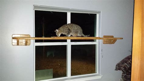 Window Shelf For Cat by Did You That We Can Customize Our Cat Furniture