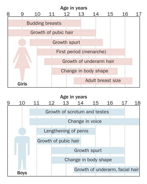 the stages of puberty in pictures early arrival google girls and parents