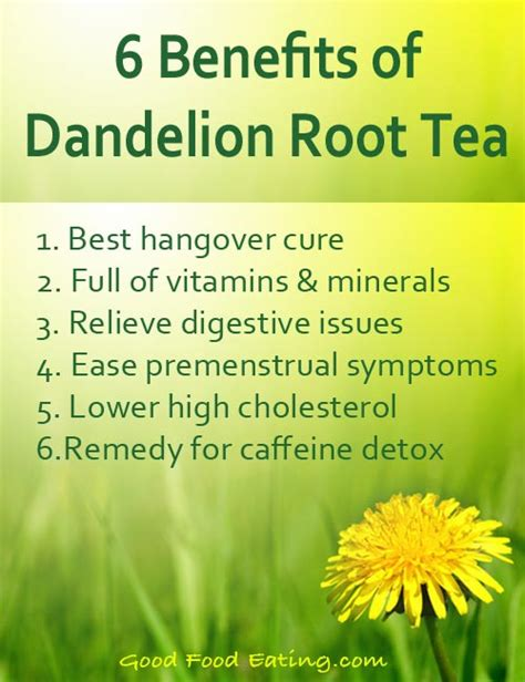 Msg Caffeine Detox Time by Benefits Of Dandelion Root Tea From Food