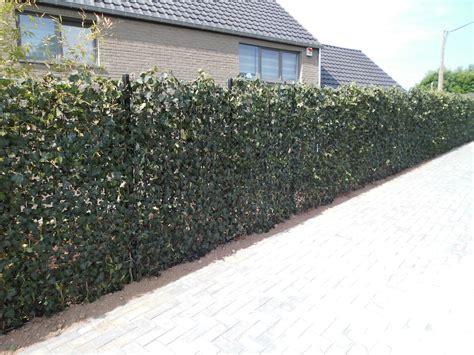devis cloture jardin pose cl 244 ture jardin liege