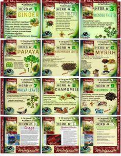 Te Divina Detox Tea Reviews by 1000 Images About Vida Divina Review And Results Detox