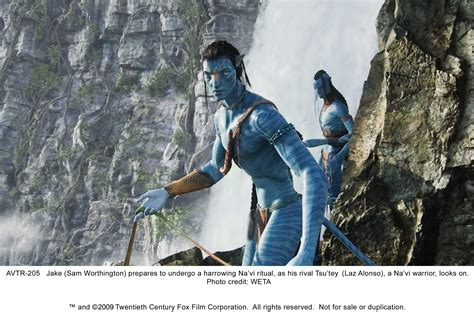 themes in avatar 2009 film the movie avatar 2009 with a message scribblings of