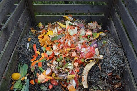 waste composter free photo green waste compost compost bin free image on pixabay 513609