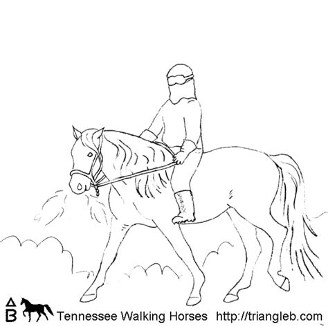 coloring pages of tennessee walking horses 86 coloring pages of tennessee walking horses