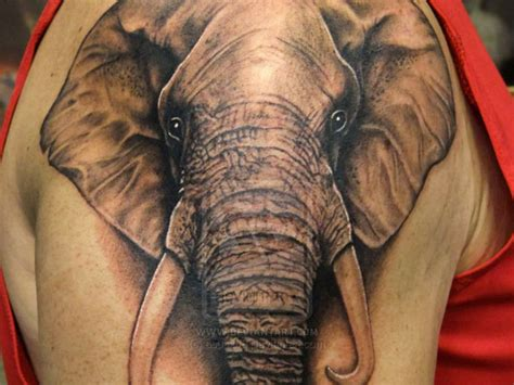 elephant tattoo groin elephant head tattoo design busbones