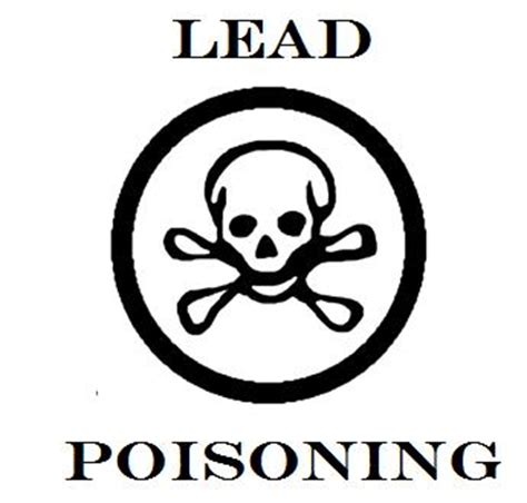lead poisoning lead poisoning playing in the world game
