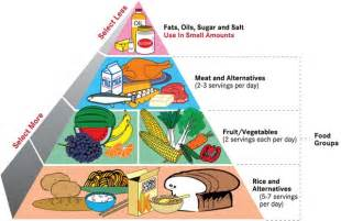 blog your diet healthy food pyramid what s 1 serving