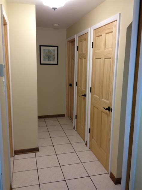 Stain or Pain Doors