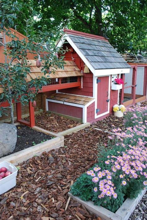 chicken coop backyard my backyard chicken coop outdoor chicken coops pinterest