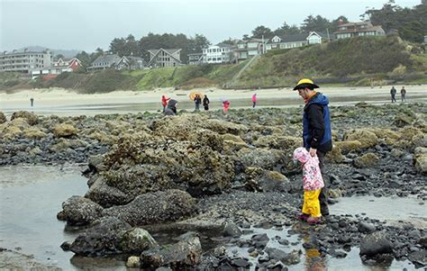 oregon coast for kids seaside and cannon beach