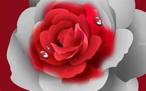 imagenes hermosas en 3d im 225 genes de flores hermosas en 3d para descargar