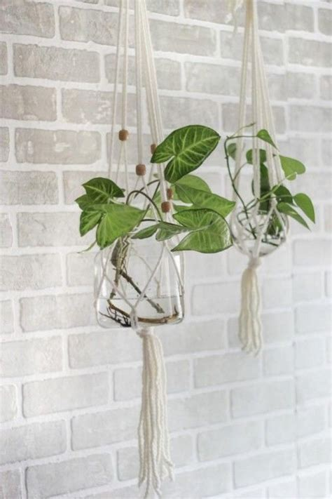 diy macrame hanging plant holder magnolia market
