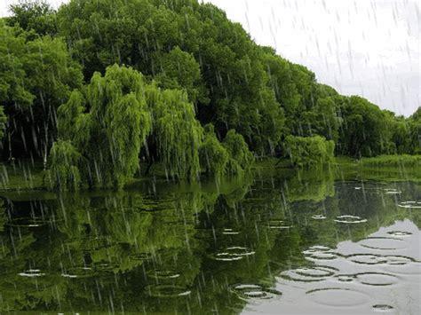 gifs hermosos gifs hermosos paisajes encontrados en la web