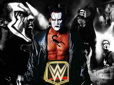 imagenes de wwe wallpaper should sting win the wwe world heavyweight chionship