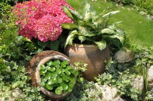best flowers for small pots container plants gardening tips garden guides