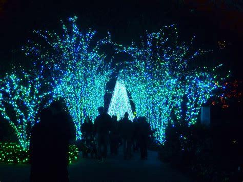 light displays atlanta garden lights nights the