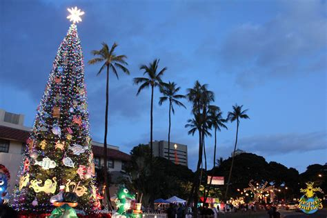christmastime in hawaii jaspa s journal