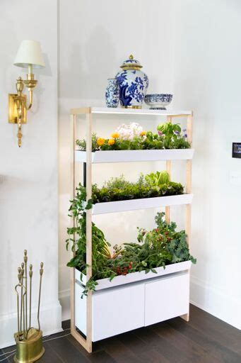 rise gardens  indoor hydroponic gardens allowing