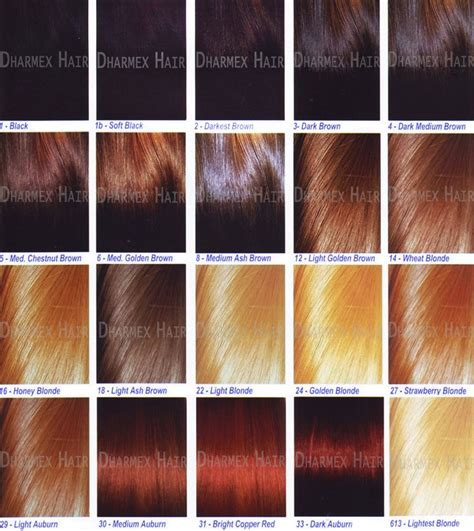 hair color chart ion red hair color chart 2015 dark brown hairs