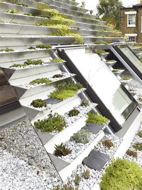 roof garden plants a london home featuring a unique terraced green roof