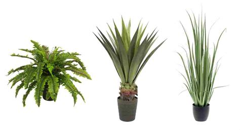Trio Awnings Artificial Outdoor Plants Artificial Plants And Trees For