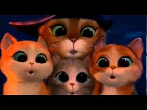 film anime entier 25 best ideas about madagascar film on pinterest film