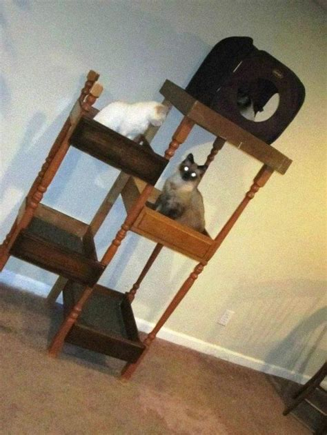 How To Keep Mice Out Of Kitchen Drawers by Build A Unique And Inexpensive Cat Tree Using Drawers