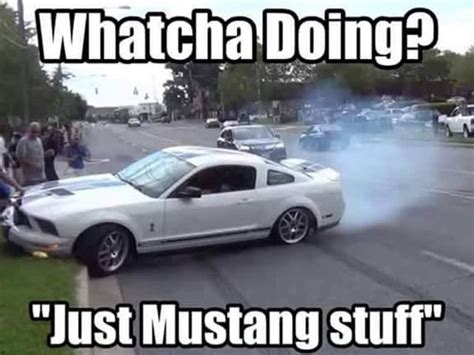 Ford Mustang Memes - image gallery mustang memes