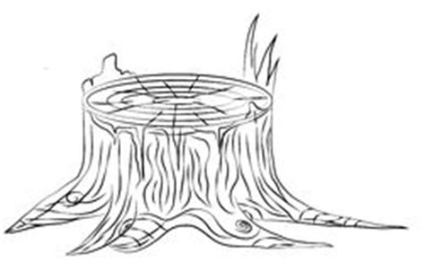 Tree Stump Outline by Tree Stump Sketch Stock Photos Images Pictures 35 Images