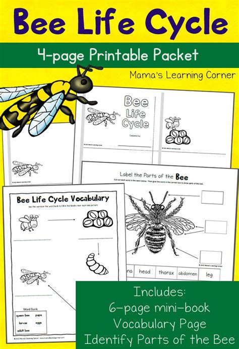 0007464673 work on your idioms master 25 best ideas about vocabulary worksheets on pinterest