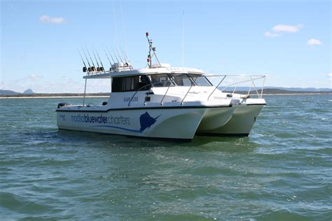 twin hull boats wide bodied twin hull cougar cat noosa blue fishing