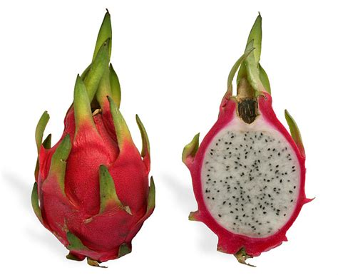 outback snack dragon fruit red pitaya