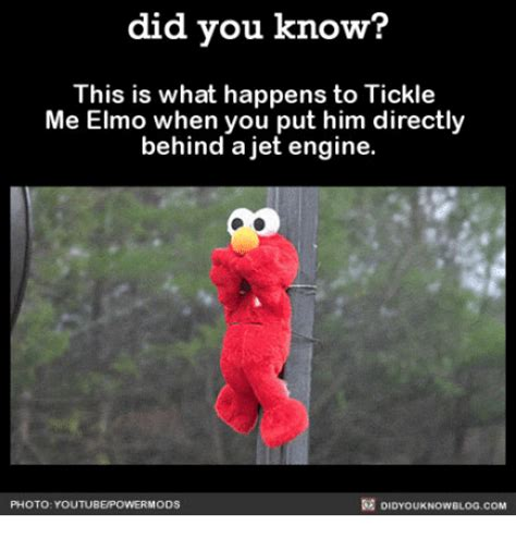 Tickle Me Elmo Meme - did you know this is what happens to tickle me elmo w him