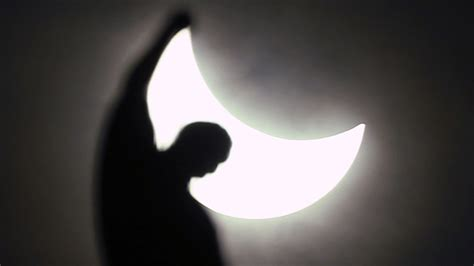 dogs solar eclipse 8 brilliant myths which come with a solar eclipse bt