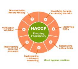 Haccp principles in foodservice is to have the operator take